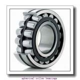 220 mm x 400 mm x 108 mm  NSK 22244 CAG3MKE4C4TL3 Spherical Roller Bearings